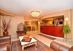 Best Western Hotel pet friendly hotels in Niagara Falls New York, dogs allowed hotels in Niagara Falls