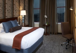 Hyatt pet friendly hotels in Niagara Falls New York, dogs allowed hotels in Niagara Falls