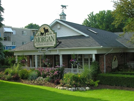 Morgan Animal Hospital pet friendly Veterinarians in Niagara Falls New York, vets in Niagara